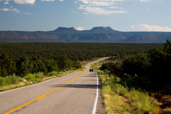 road_in_bears_ears